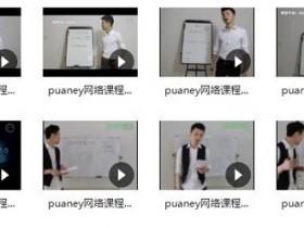 puaney倪《网络课程5.0属性》完整版