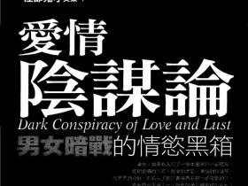 奸的好人《爱情阴谋论》PDF完整版