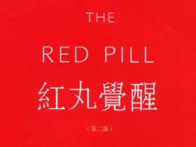 《红丸2.0》PDF电子书