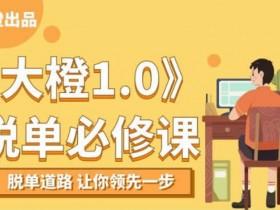 大橙1.0《脱单必修课》视频课程